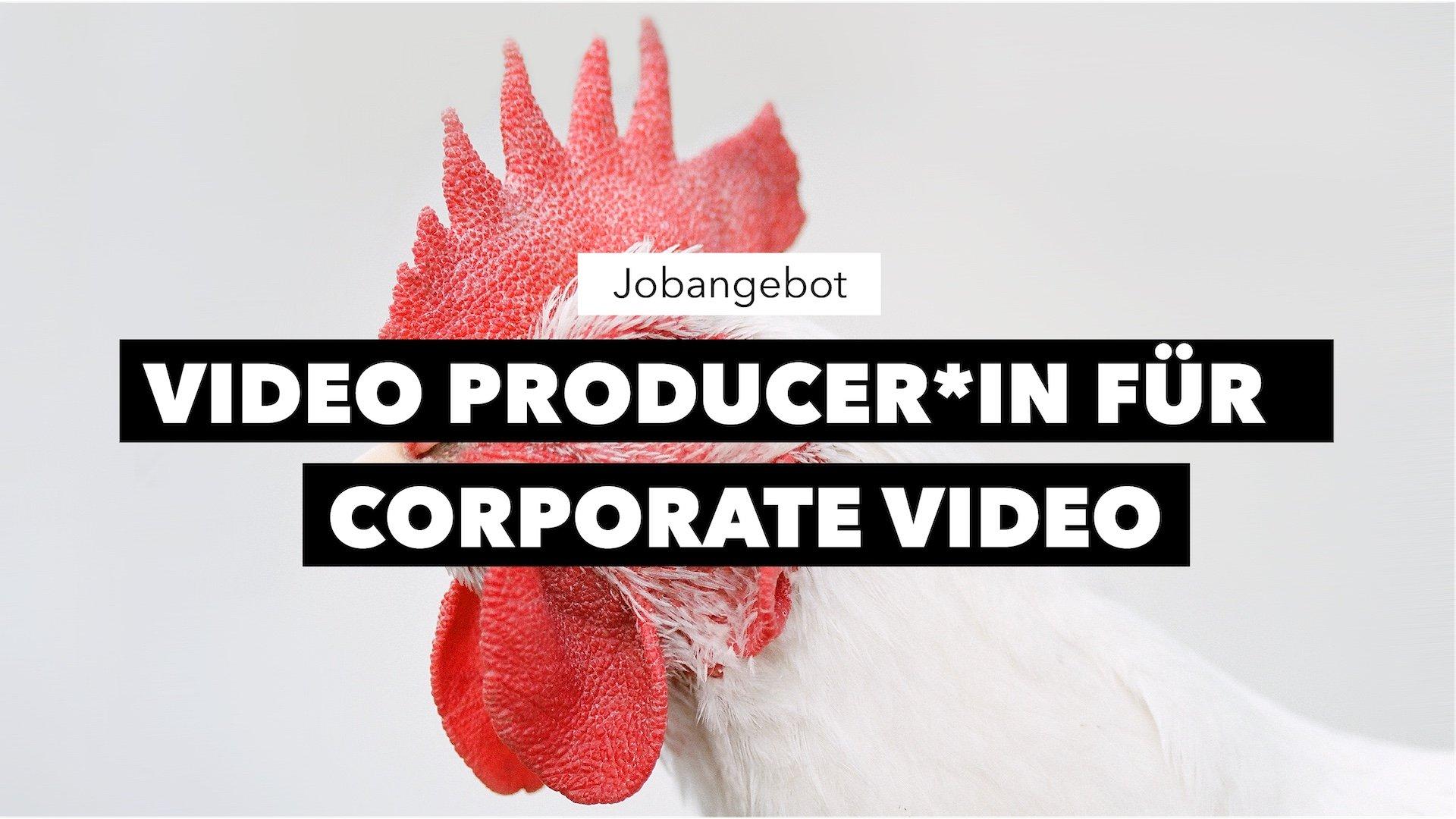 Jobausschreibung Video Producer